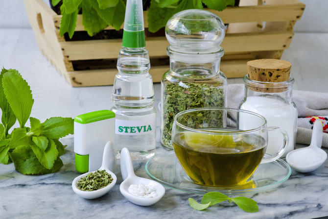 stevia pianta