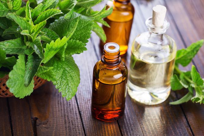 olio essenziale menta