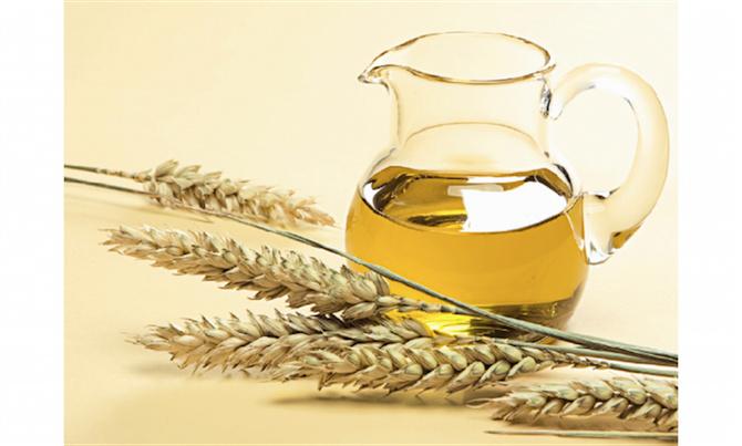 massaggio olio di germe di grano