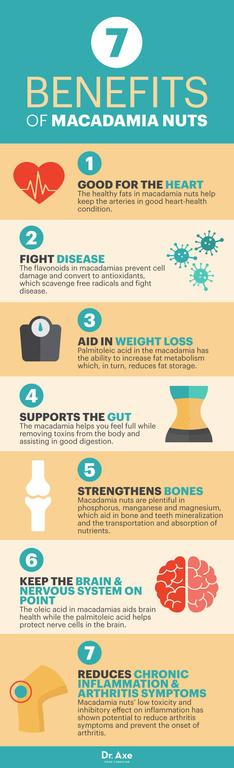 Benefici e proprietà delle noci macadamia