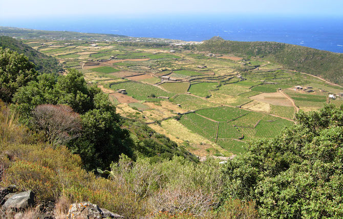 posti per fare trekking pantelleria