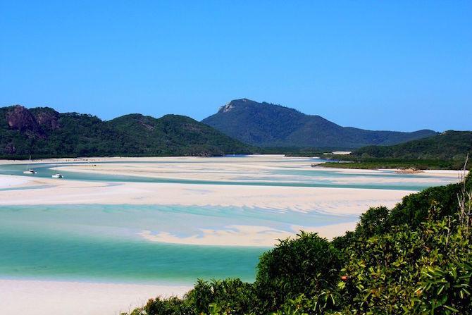 spiaggia whitehaven beach australia