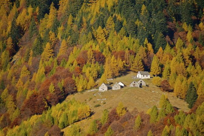 autunno val vigezzo