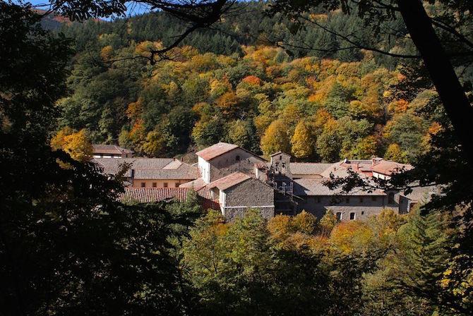 autunno foreste casentinesi