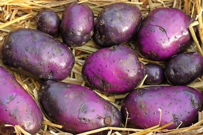 patate-blu