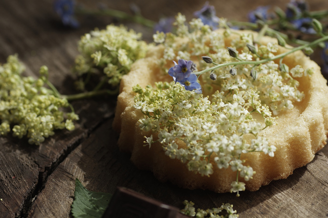 torta-fiori-sambuco