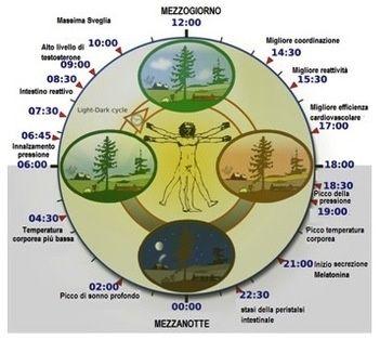Ritmi circadiani e orologio biologico