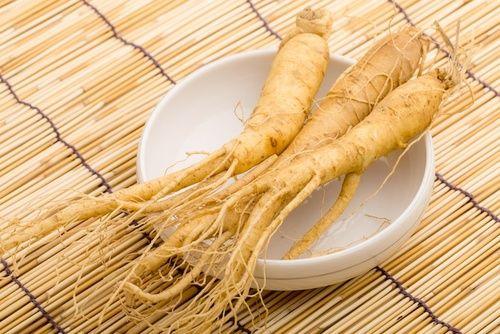 Ginseng, un adattogeno vegetale