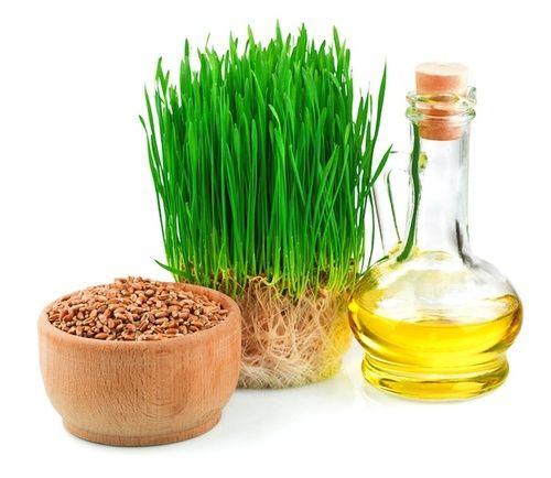 Olio di germe di grano per la memoria