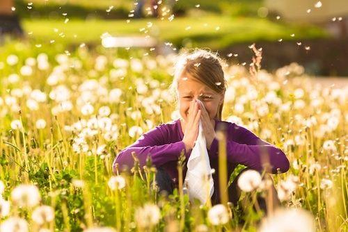 Allergia, rimedi naturali