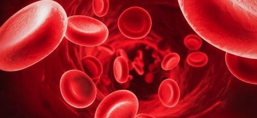 Anemia, disturbi e rimedi naturali