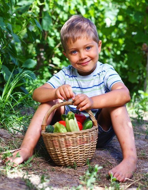 Funzione terapeutica del giardinaggio