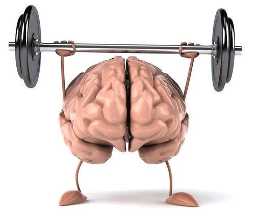 Salute sistema nervoso