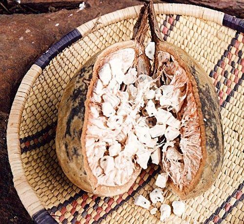 Baobab per le difese immunitarie