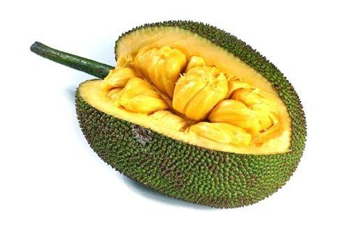 Jackfruit, uso e proprietà