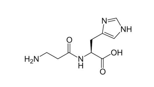 Molecola di Carnosina