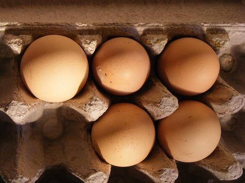 Uova, alimento ricco di vitamina D