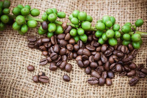 Caffè, ricco di caffeina