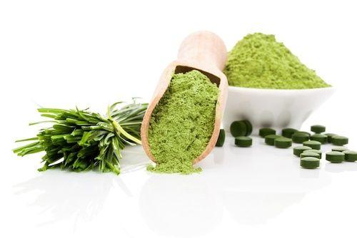 Alga spirulina fonte di vitamina B12