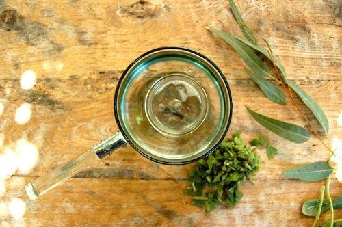 Olio essenziale di eucalipto contro la sinusite