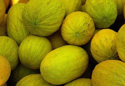 Meloni, frutti dimenticati