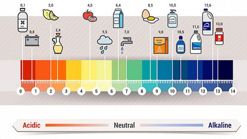 Dieta acid-basic