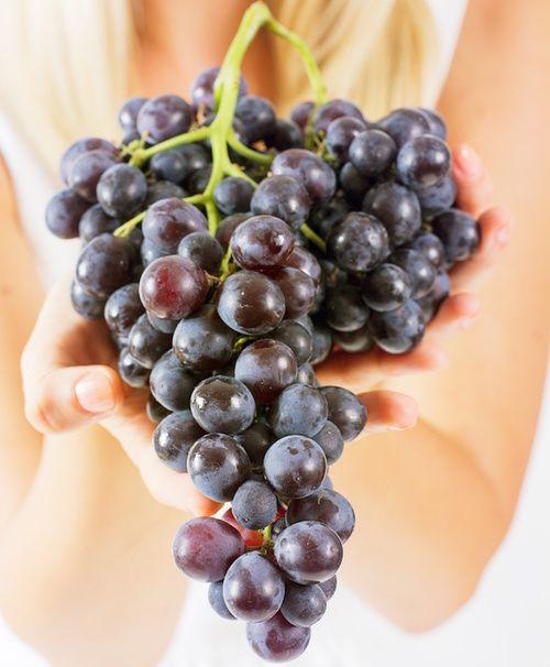 OPC ricavati dai semi dell'uva rossa