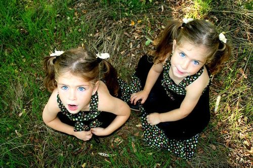 Piante dei gemelli