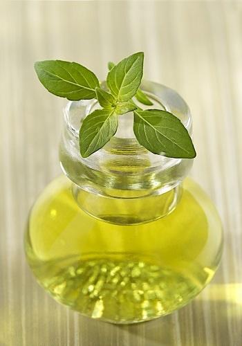 Olio essenziale di basilico