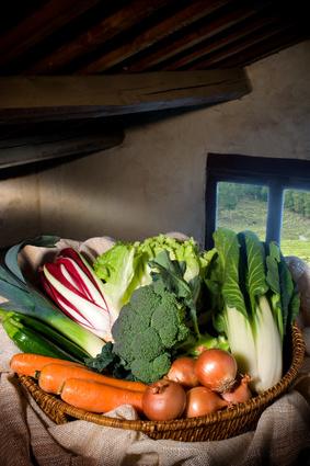 La verdura dell'inverno