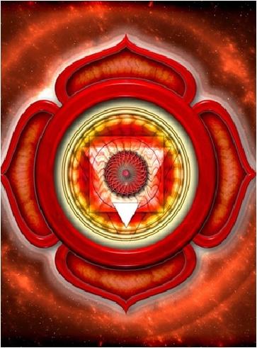 Primo Chakra – Muladhara