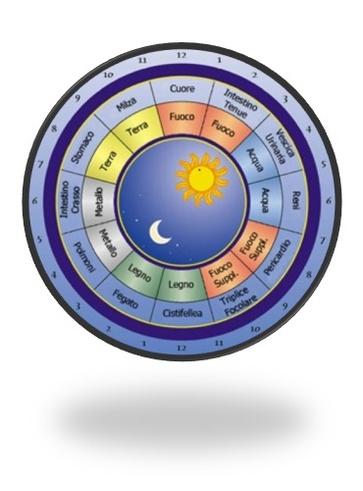 I ritmi circadiani energetici