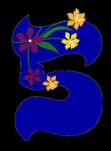 Cinque: simboli e significati