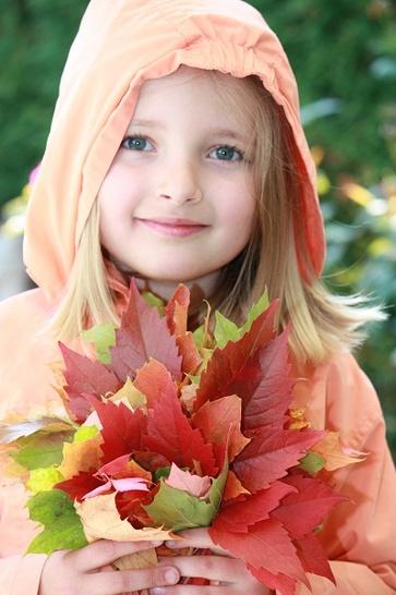 Ricerca di foglie dalle mille tonalità e forme segrete