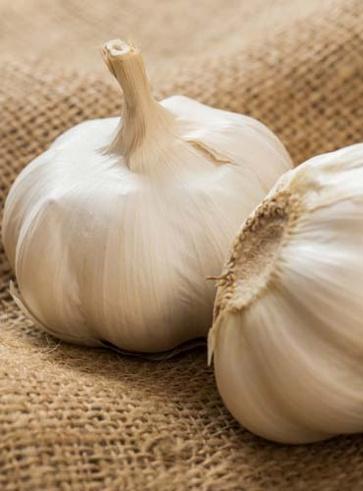 L'aglio, il battericida naturale