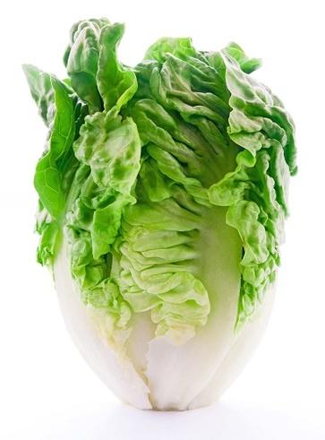 La lattuga dalle virtù calmanti