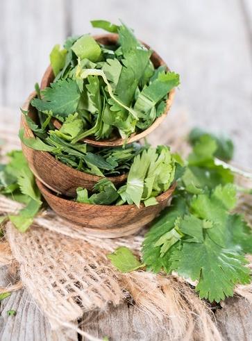 Ricette con le erbe selvatiche della tradizione contadina