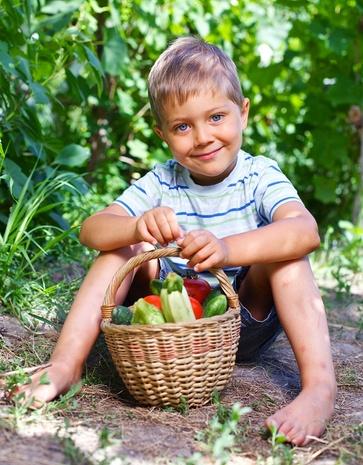 Maggio, raccolte produttive dall'orto
