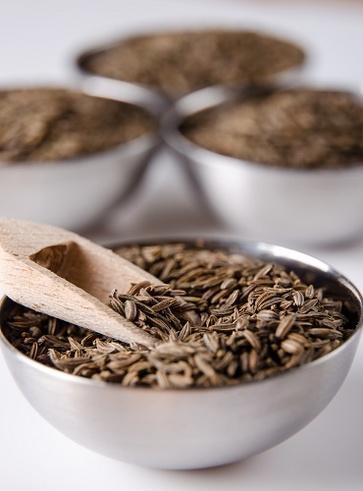 Semi vari e germe di grano