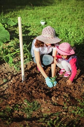 Giochiamo a fare l'orto