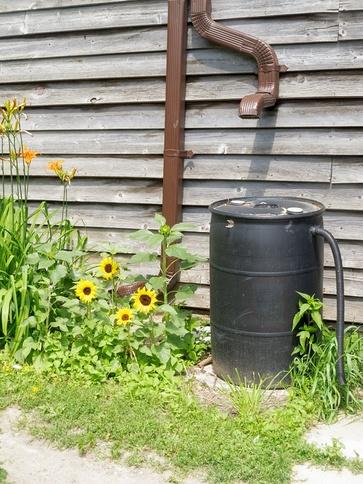 Irrigazione a luglio