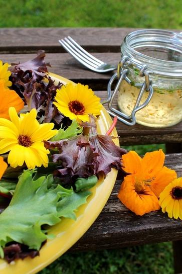 Tra frutti, foglie e fiori spontanei, in estate si mangia