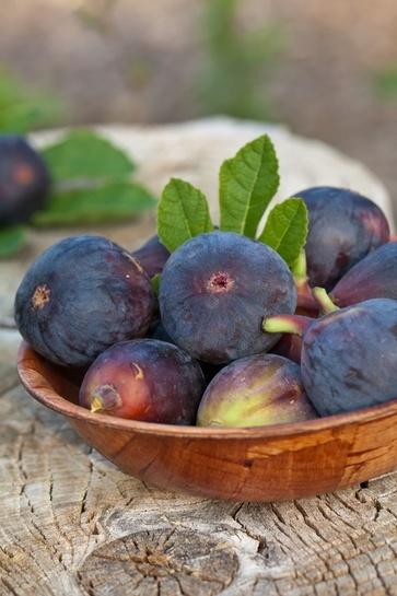 I dolci frutti antichi: i fichi