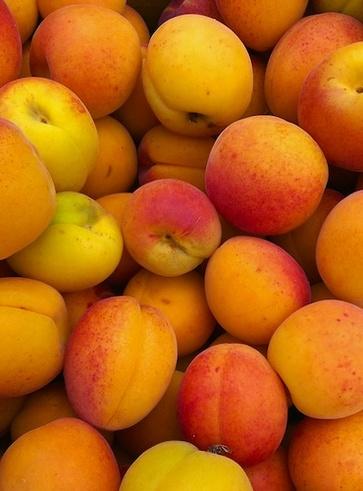 Albicocche, fonte di vitamina A