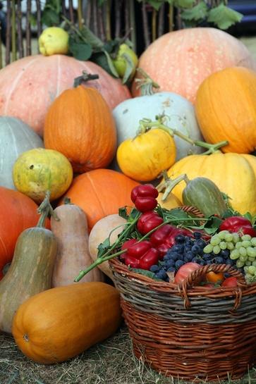 La frutta di ottobre