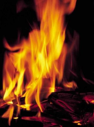 Intestino in fiamme? Domalo con gli antinfiammatori naturali