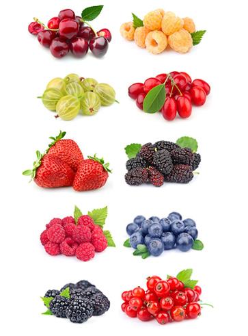 I frutti di bosco e le loro virtù