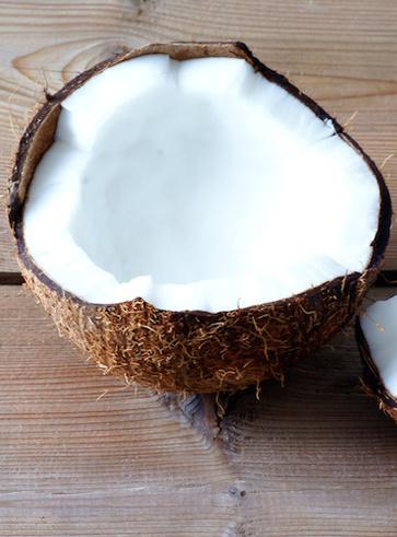 Il cocco