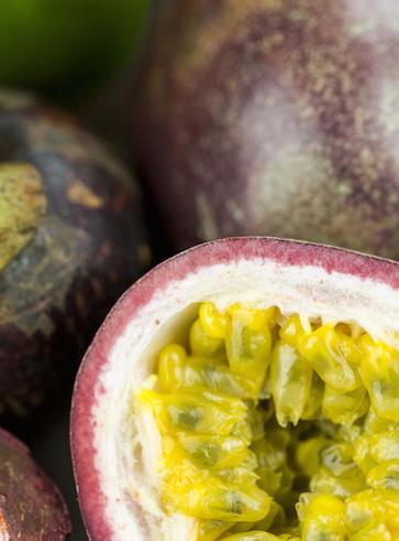 I frutti della passiflora