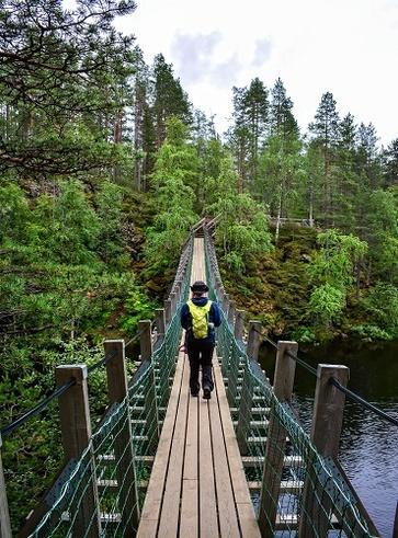 La Finlandia dei parchi al confine con la Russia